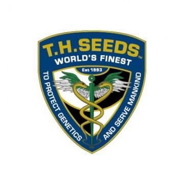 T.H. Seeds Stracciatella...